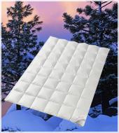 Пуховое одеяло кассетное Legend 650 WD зимнее теплое QQQQ