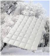 Пуховое одеяло кассетное Legend 650 WD зимнее среднее QQQ