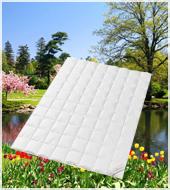 Пуховое одеяло cтеганое Legend 650 SD летнее легкое Q