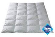 Пуховое одеяло Dor® Sanitized®, зимнее QQQ